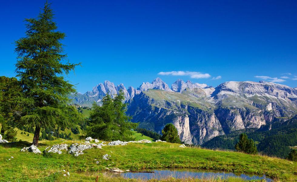 Hotel-Pension Marmotta - Gargellen : Sommer